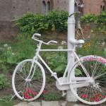cykel 1