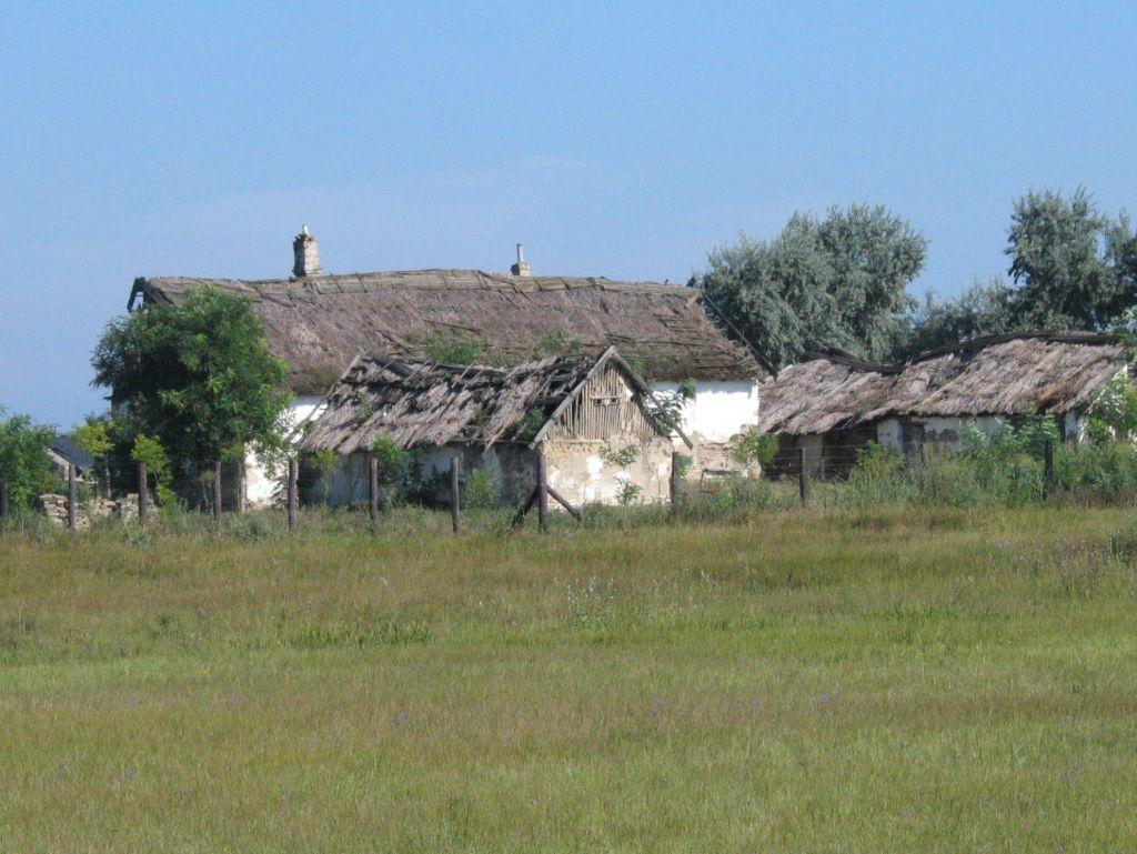 Puszta-hus - beskåret og reduceret