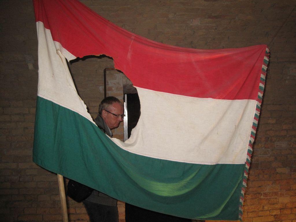 Ungarn flag med hul